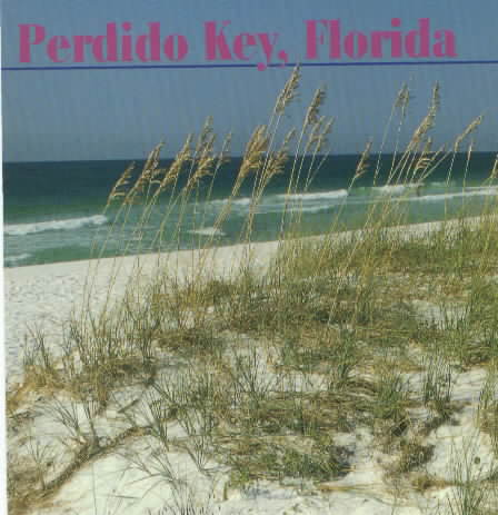 Sea Oats on Perdido Key.jpg